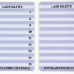 LashPalette 2in1