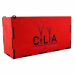 LashBox для ресниц на 10 планшеток RED